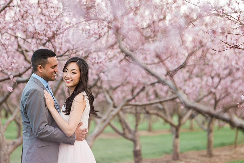 cherry blossom prewedding engagement photoshoot timing planning booking 2