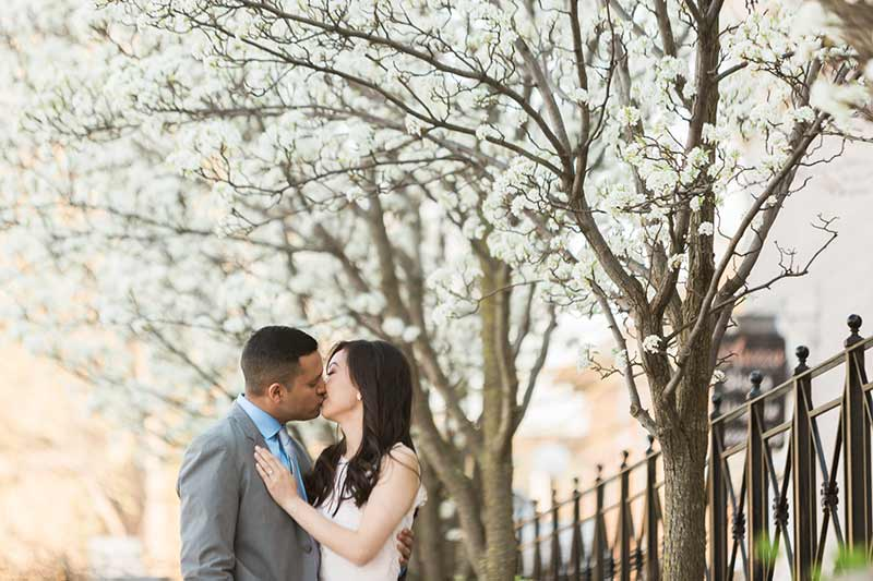 cherry blossom prewedding engagement photoshoot timing planning booking 21