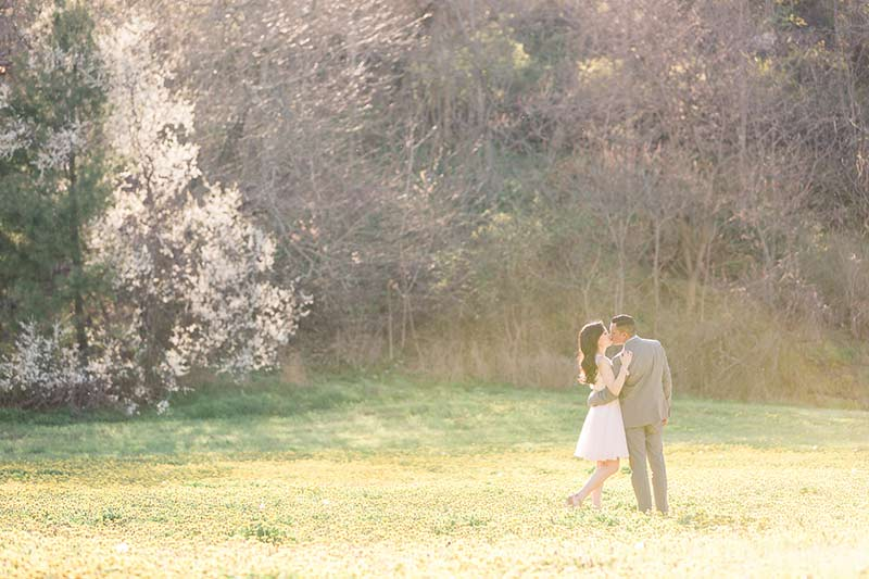 cherry blossom prewedding engagement photoshoot timing planning booking 3