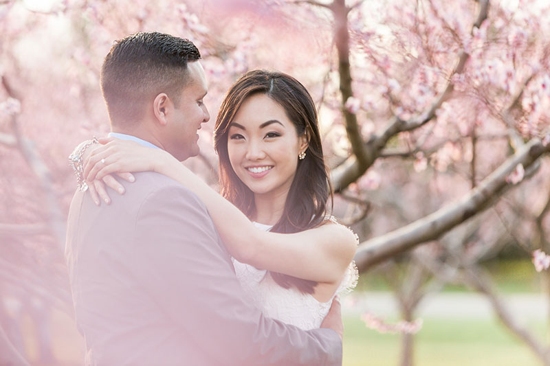 cherry blossom prewedding engagement photoshoot timing planning booking 5