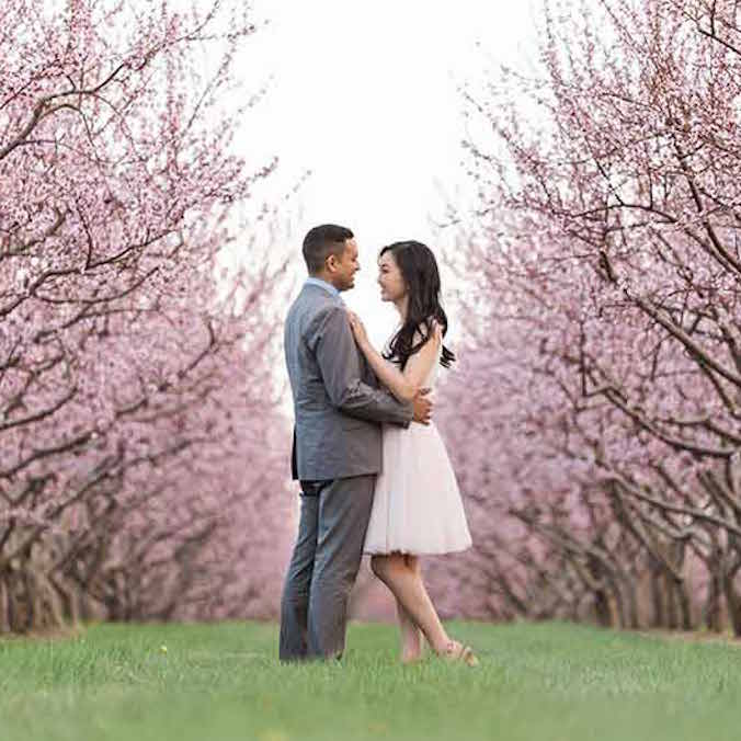 Cherry Blossom Pre-wedding and Engagement Photoshoots: Planning, Timing, & Everything You'll Want to Know