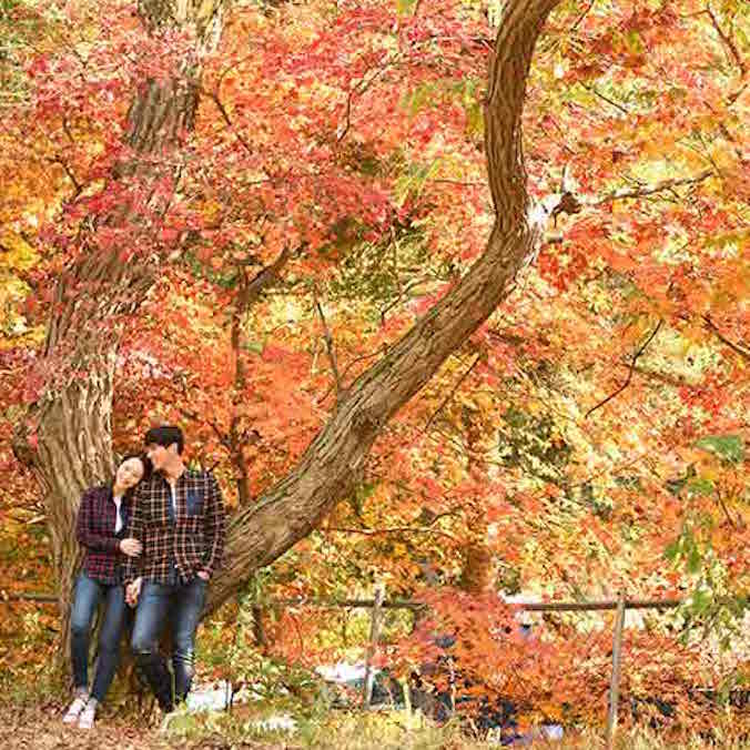 $2,300 USD Korean Pre-Wedding Photography Package, Indoor + Outdoor Photoshoot (Garden Scenes+Train Rail Scene)