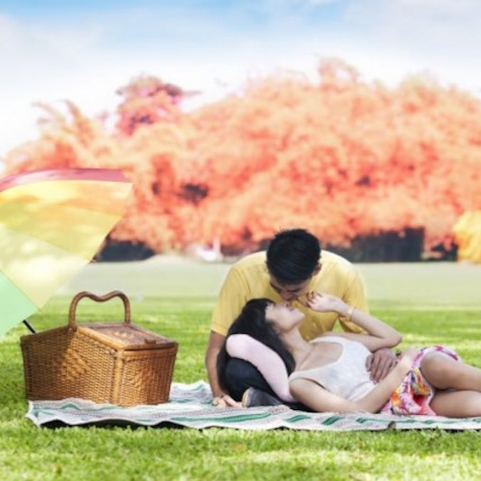 $1,000 USD ++ Intimate Park or Beach Marriage Proposal Package