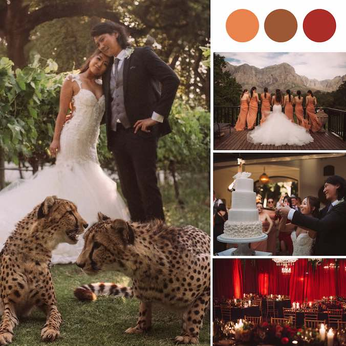 This Couple Added Cheetahs Into Their South African Vineyard Wedding