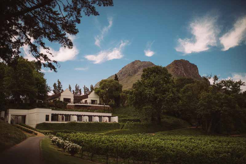 molenvliet cape town south africa vineyard wedding 1