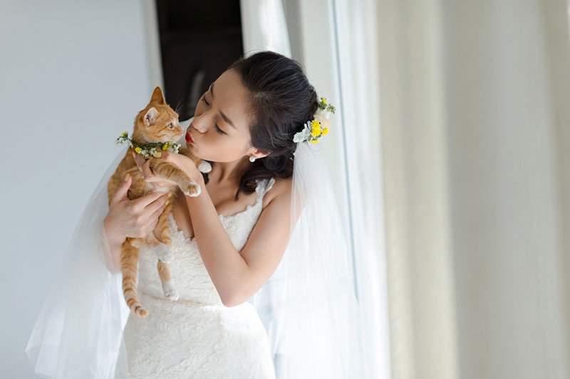 aleenta phuket wedding cat themed wedding boutique ilaire planner review 5