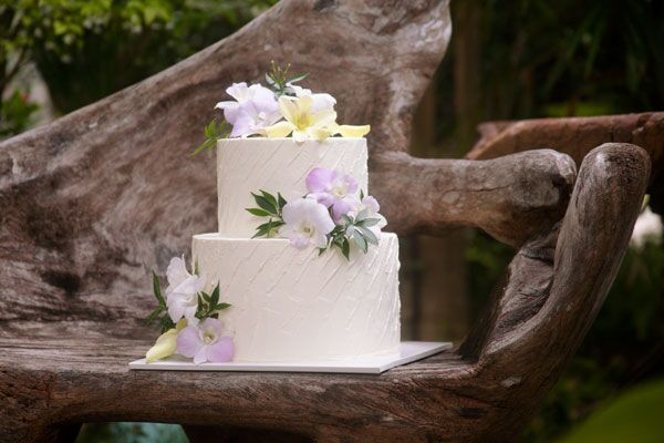 2-tiered Fondant-Covered Cake for 20-25 guests