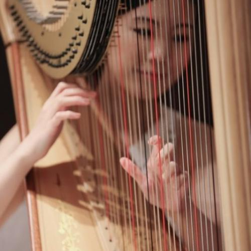 The Euphonious - Harp Performance--香港岛-香港