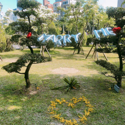Intimate Park or Beach Marriage Proposal Package