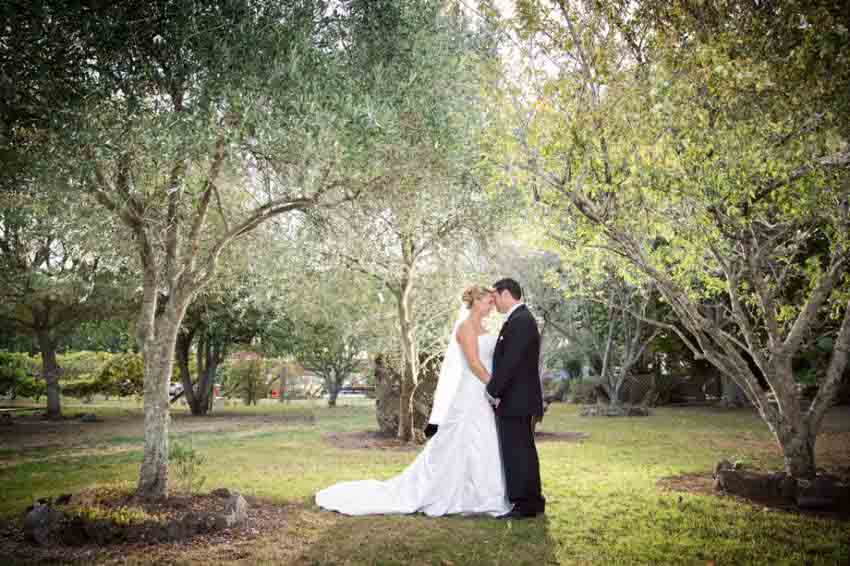 Markovina Vineyard Estate Wedding Package (40 pax)